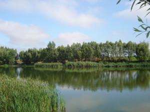 Łowisko Krzekotowo